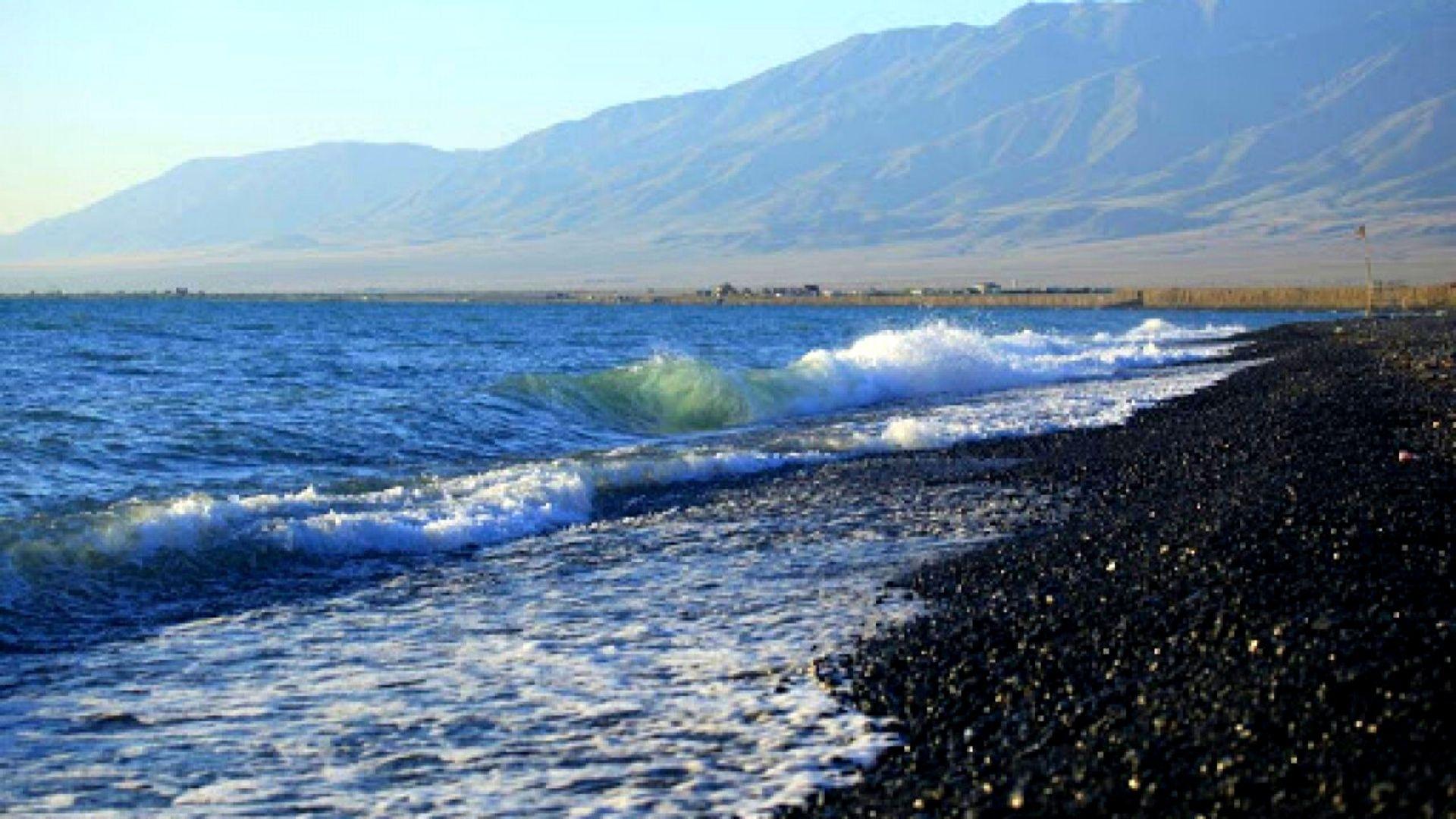 Земли мало? Об опасности осушения Алаколя заявляют экологи «ECOJER»